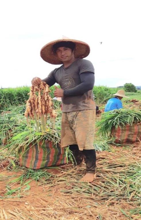 阿里山鄒族青年鄭英豪先生用勞動力開展自立的生活照片